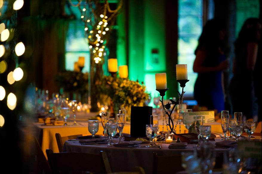 551 Schlitz Audubon Fairytale Wedding Whimsical Milwaukee Photographer   Tiffany Greg Enchanted Forest