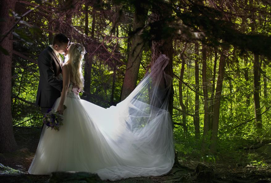 85 Schlitz Audubon Fairytale Wedding Whimsical Milwaukee Photographer   Tiffany Greg Enchanted Forest